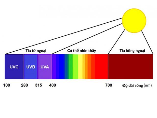 Tia tử ngoại là gì? Đặc điểm, phân loại và ứng dụng trong đời sống
